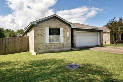 Round Rock Single Family Home For Sale: 3611 Walleye Way