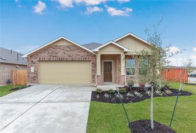 Del Valle Single Family Home For Sale: 7341 Spring Ray Dr