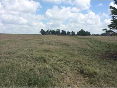 Hutto Farm For Sale: County Rd 394