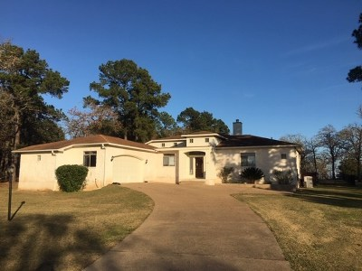Bastrop County Single Family Home For Sale: 191 Colovista Pkwy