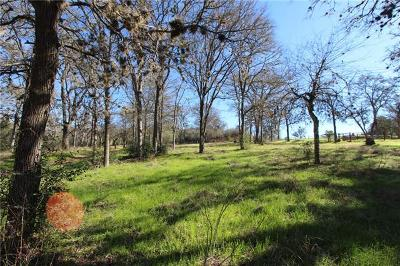 Bastrop County Residential Lots & Land For Sale: 517 Tahitian Dr