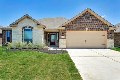 Kyle Single Family Home For Sale: 1531 Twin Estate Drive