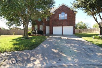 Pflugerville Single Family Home For Sale: 17700 Liffey Cv