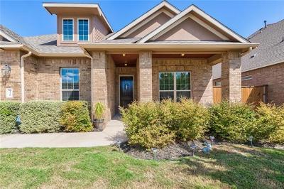 Georgetown Single Family Home Pending - Taking Backups: 216 Lake Theo Ln