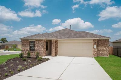 Kyle Single Family Home For Sale: 178 Florida Springs Dr