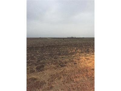 Granger TX Farm For Sale: $180,000