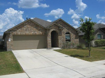 Buda Single Family Home For Sale: 542 Eagle Brook Ln