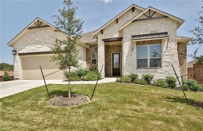 Dripping Springs Single Family Home For Sale: 520 Peakside Cir