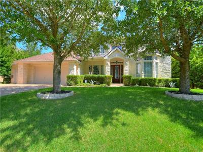 Austin Single Family Home For Sale: 9516 Big View Dr