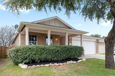 Leander Single Family Home Pending - Taking Backups: 433 Moorhen Cv