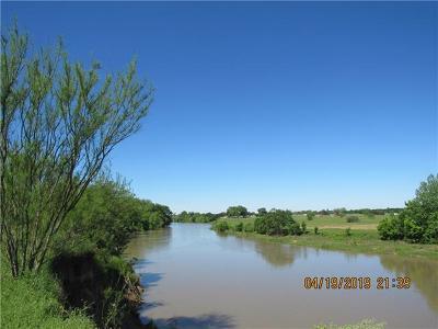 Bastrop Farm For Sale: 242 Doc Bryson Ln