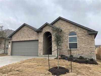 Hays County Single Family Home For Sale: 128 Limerick Rd