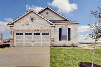 Hutto Single Family Home For Sale: 105 Muenster Dr