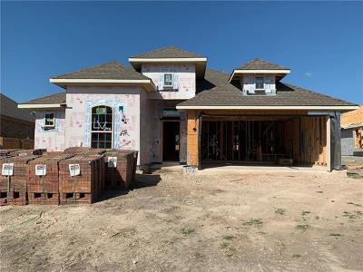 Hutto Single Family Home For Sale: 107 Skylark Ln