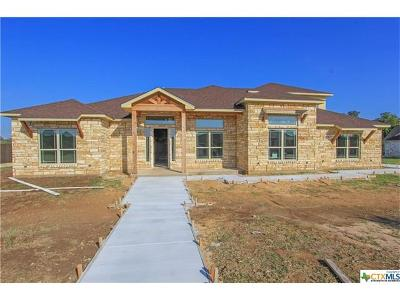 Salado Single Family Home For Sale: 528 Creekside Meadow Dr