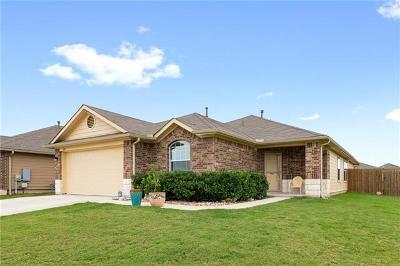 Kyle Single Family Home For Sale: 360 Alpha