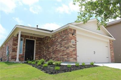 Kyle Single Family Home For Sale: 1405 Breanna Ln