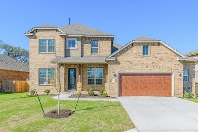 Dripping Springs Single Family Home For Sale: 155 Quartz Dr