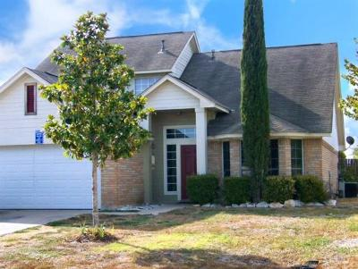 Leander Single Family Home For Sale: 700 Red River Ln