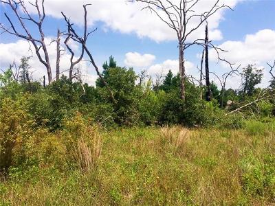 Bastrop Residential Lots & Land For Sale: TBD Brahman