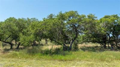 Dripping Springs Residential Lots & Land For Sale: 17916 Vistancia Dr