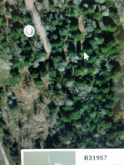 Bastrop County Residential Lots & Land For Sale: Lot 12-13 Elm St
