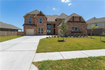 Pflugerville Single Family Home For Sale: 20625 Mouflon Dr