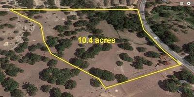Dripping Springs Farm For Sale: 24471 Rr 12