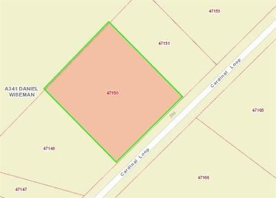 Paige Residential Lots & Land For Sale: 241 Cardinal Loop