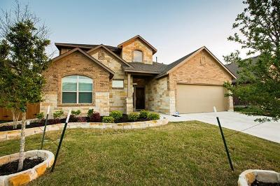 Pflugerville Single Family Home For Sale: 3713 Lunet Ring Way