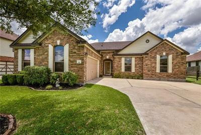Pflugerville Single Family Home For Sale: 521 Willow Walk Dr