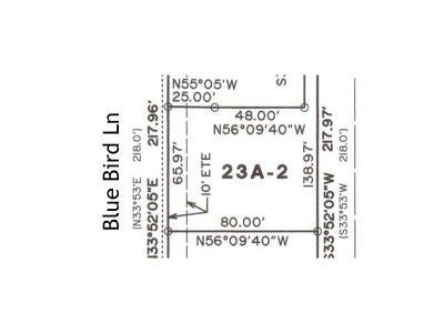 Austin Residential Lots & Land For Sale: 5503 Blue Bird Ln