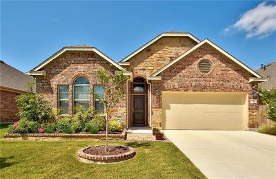 Buda Single Family Home For Sale: 232 Tangerine Dr