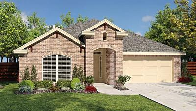 Pflugerville Single Family Home For Sale: 18317 Urbano Dr
