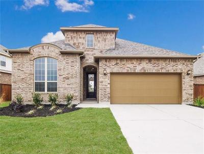 Liberty Hill Single Family Home For Sale: 313 Pendent Dr