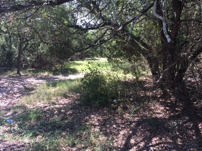 Round Rock Residential Lots & Land For Sale: 2409-2 Walsh Dr