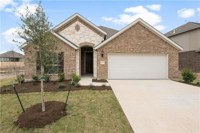 Round Rock Single Family Home For Sale: 6749 Catania Loop