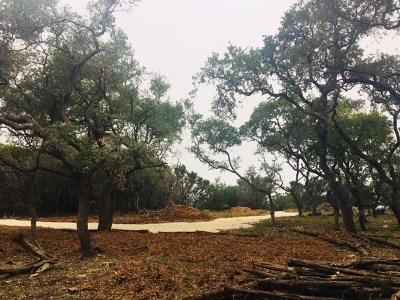 Wimberley Residential Lots & Land For Sale: 1801 Days End Rd