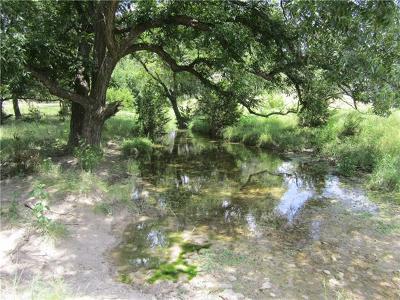 Burnet TX Farm For Sale: $270,000