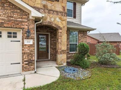 Hays County Single Family Home For Sale: 212 Orchard Hill Trl