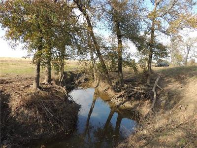 Bell County, Burnet County, Coryell County, Lampasas County, Llano County, McLennan County, Mills County, San Saba County, Williamson County Farm For Sale: 1662 Cr 465