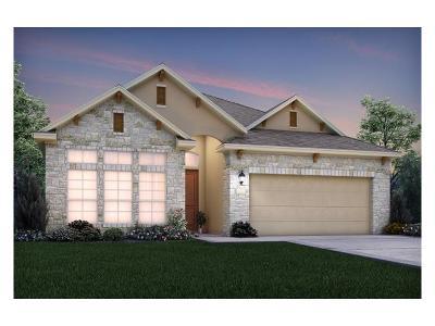Round Rock Single Family Home For Sale: 3255 Hidalgo Loop