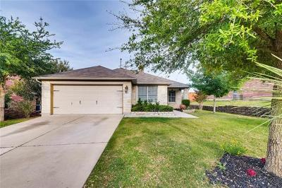 Kyle Single Family Home Active Contingent: 1379 Cherrywood