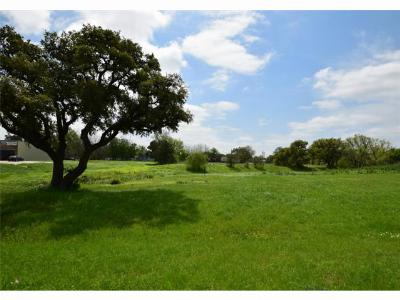 Flatonia TX Commercial For Sale: $642,900