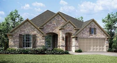 Single Family Home For Sale: 12503 Altamira St