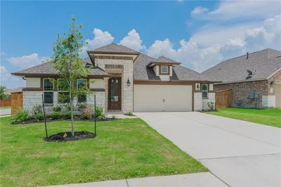 Round Rock Single Family Home For Sale: 2917 Consuelo Way