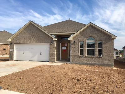 Round Rock Single Family Home For Sale: 3308 Lauren Nicole Ln