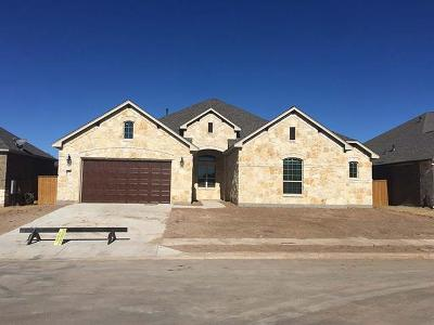Round Rock Single Family Home For Sale: 3824 Kyler Glen Rd