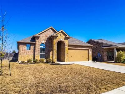 Hays County Single Family Home For Sale: 293 Snow Owl Holw