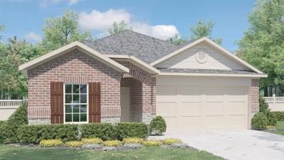Kyle Single Family Home For Sale: 160 Bull Creek Dr